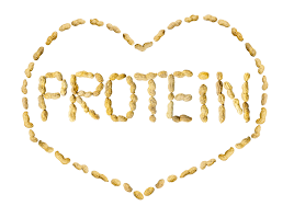 Winter Warmers – Protein